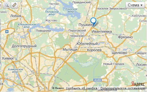 Россия, Московская область, Пушкинский район, поселок Лесные Поляны.